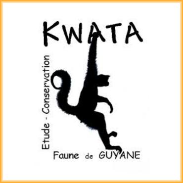 kwata1