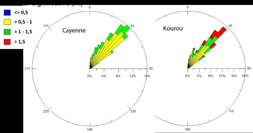 Roses des houles à Cayenne (entre juin 2016 et novembre 2017) et Kourou (entre juin et décembre 2016)