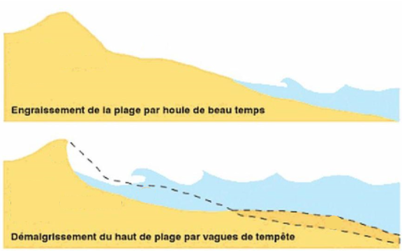 Modifications du profil de plage selon les conditions hydrodynamiques. Paskoff, 1998