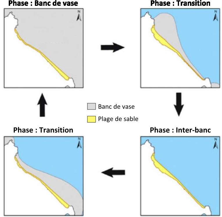 Schéma de synthèse sur la rotation de plage. D'après Antony E., 2010